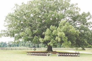 Greensboro Tent Rentals | 100 Acre Farm Wedding Ceremony | Fruitwood Folding Chairs